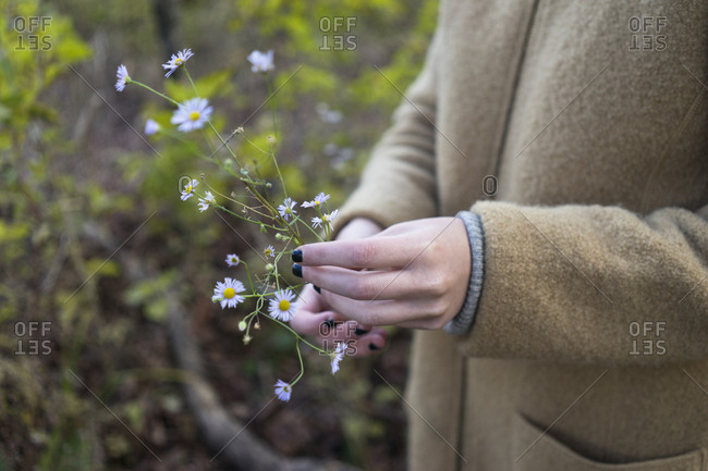 Close up of hands of woman holding flowers