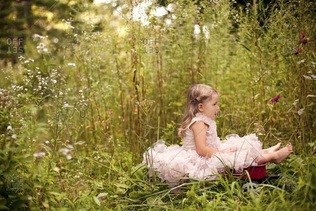 Girl in frilly dress sitting in tall flowers