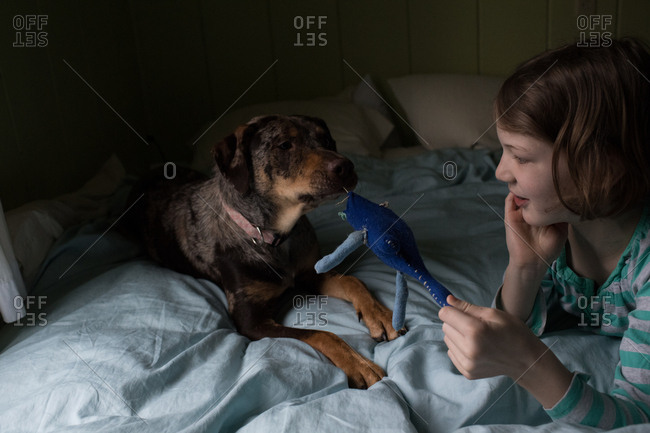 Girl giving dog a stuffed toy