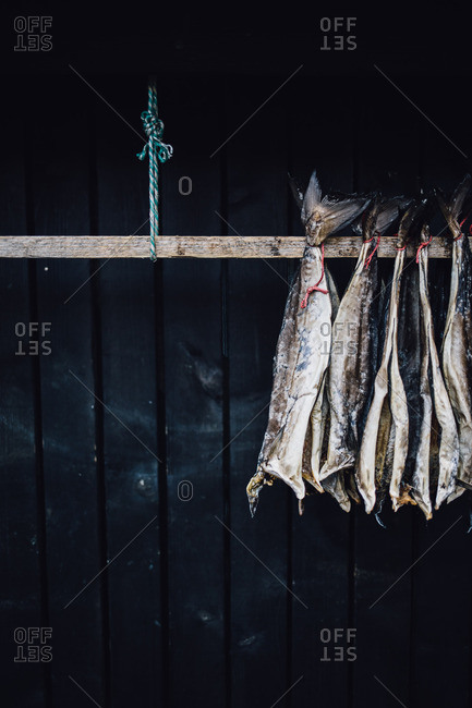 Fish skins hanging from pole