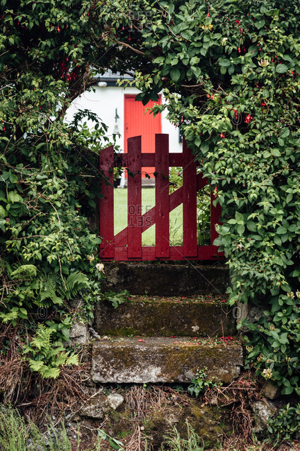 A gate over stone steps, Ireland