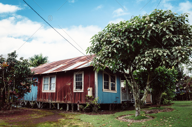A house in rural Hawaii