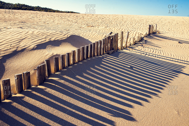 Wooden fence posts and shadows on a sand dune