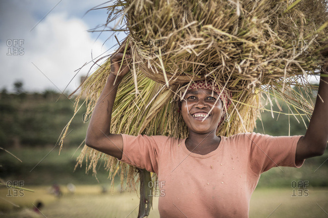 Toliara, Madagascar - June 17, 2016: Portrait of a lady working in rice paddy fields near Ranomafana