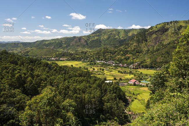 Mandraka Valley rice fields