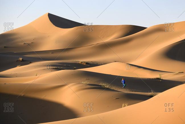 A berber man carrying water through the desert