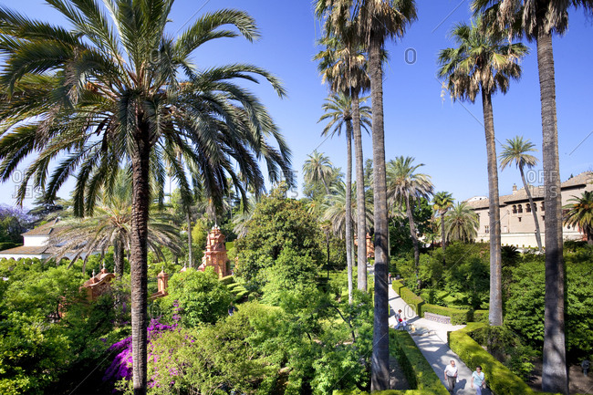 Barrio Santa Cruz, Seville, Andalusia, Spain - January 26, 2016: Alcazar Palace, Reales Alcàzares