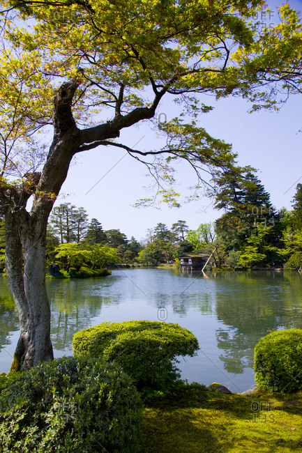 The lake in Kenroku-en garden