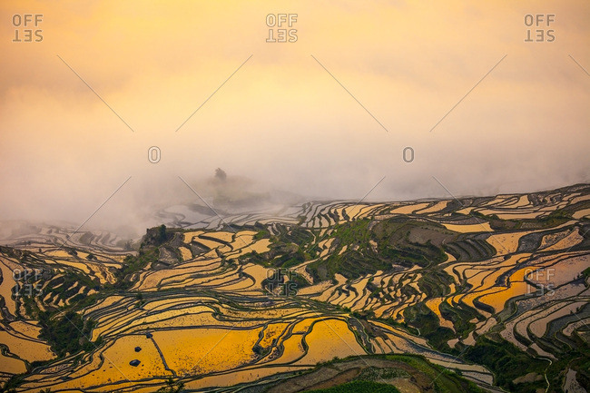 Cultural Landscape of Honghe Hani Rice Terraces during sunrise