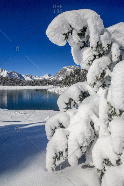Heavy snow on the landscape of an alpine lake, Valmalenco