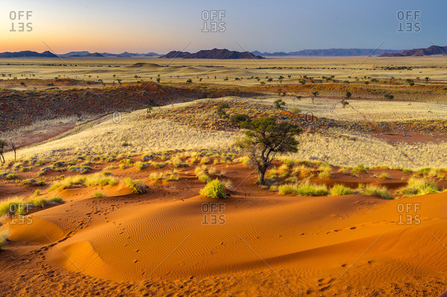 Petrified dunes at sunset