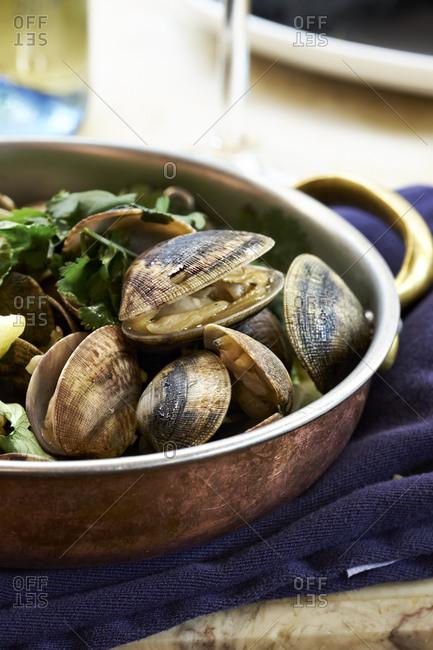 Sea Me restaurant - Saute of clams