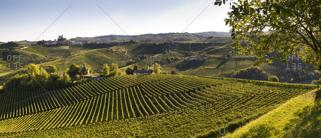 Landscape of vineyards hills and the village