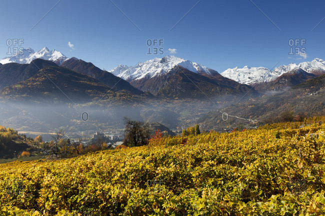 Italy, Aosta Valley, Aosta district, Saint-Pierre, St Pierre, Alps, Vineyards