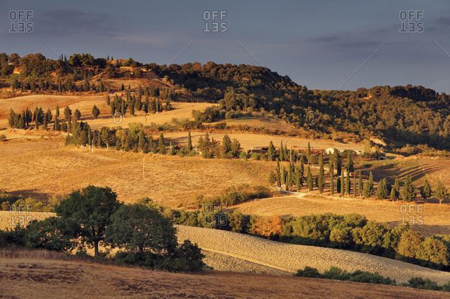 Typical Orcia Valley landscape from Pienza village looking towards Monticchiello village
