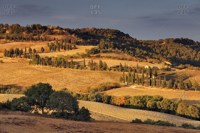 Typical Orcia Valley landscape from Pienza village looking towards Monticchiello village