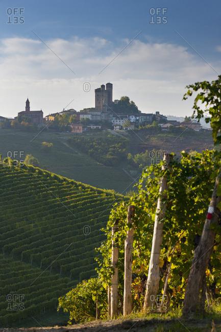 Vineyards and Serralunga d'Alba village