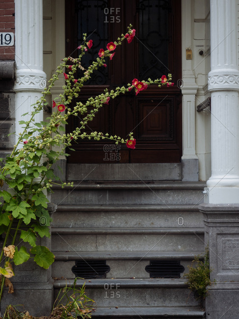 Amsterdam, Netherlands - July 20, 2015: Steps to a home's door
