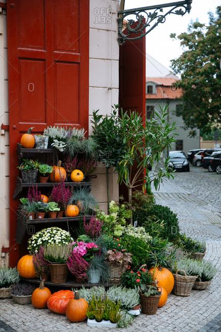 Street corner with fall display, Prague