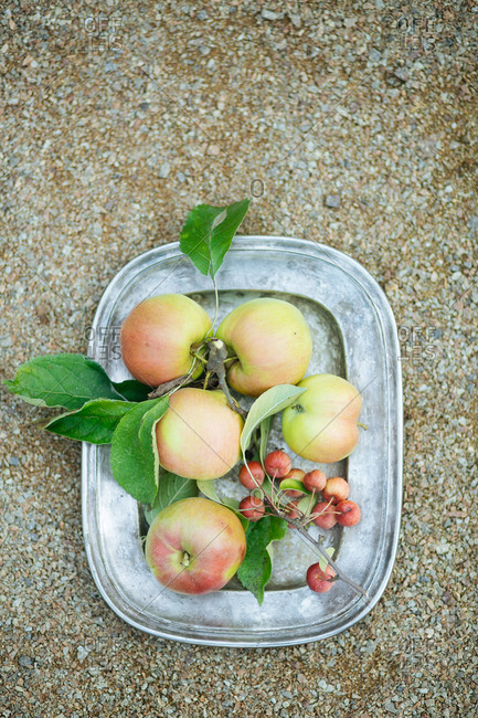 Tray with apples on ground