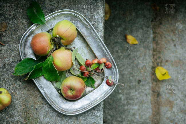 Apple tray on steps