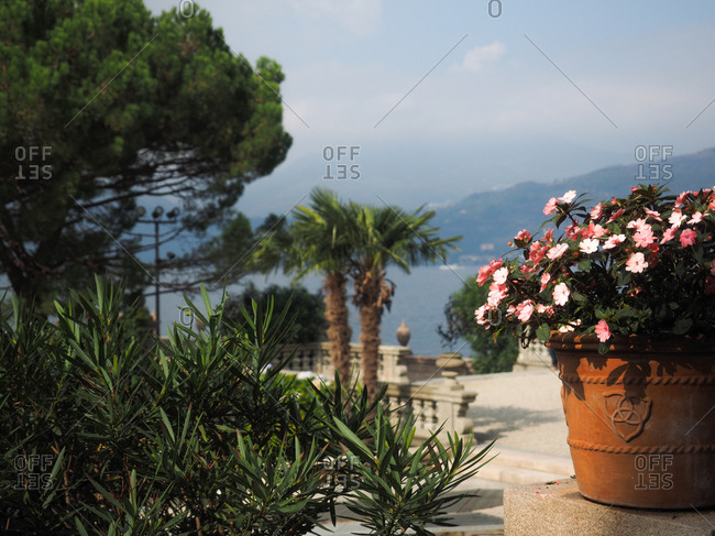 Flower pot outdoors in Stresa, Italy