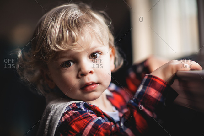 Portrait of toddler boy in plaid shirt