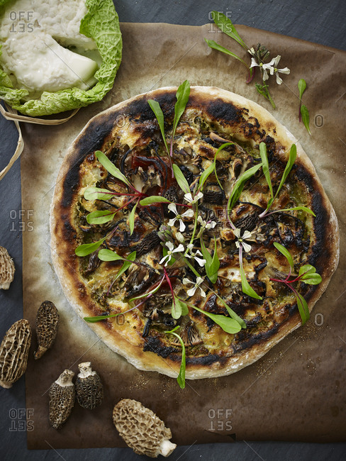 Morel mushroom pizza with micro greens