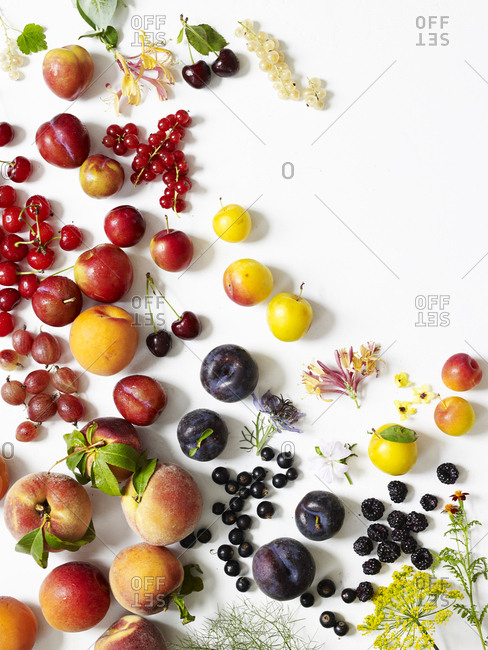 Arrangement of summer fruits, berries, herbs and flowers