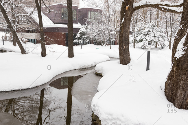 Pond with reflection of bare trees in a snow covered park in Sapporo, Japan
