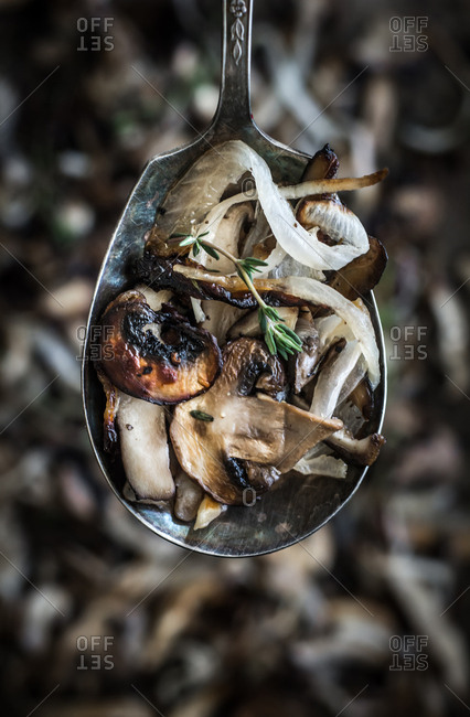 Mushrooms and onions on a spoon