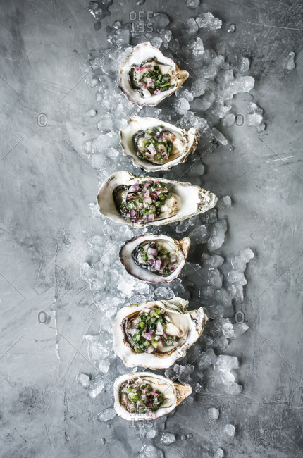 Oysters on half shell from above