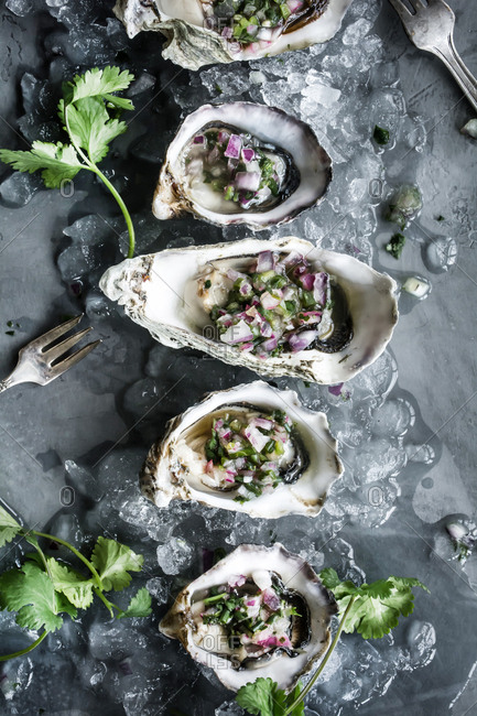 Oysters on half shells from above