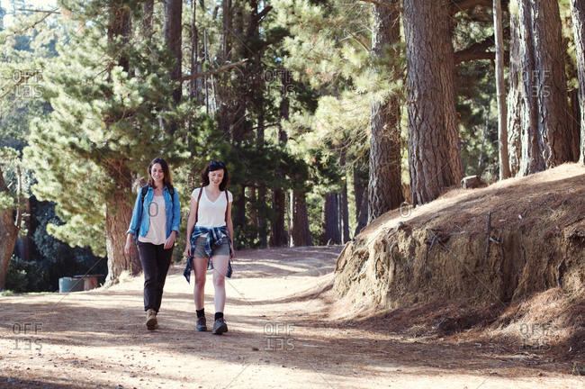 Happy female friends walking in forest