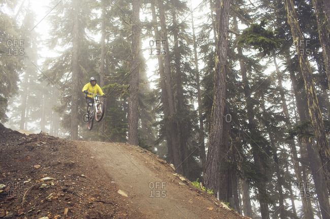 Low angle view of man mountain biking in forest during foggy weather