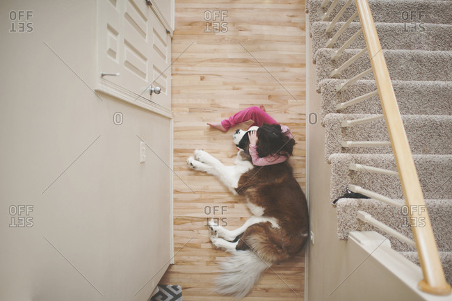 High angle view of girl sitting by Saint Bernard sleeping on floor at home