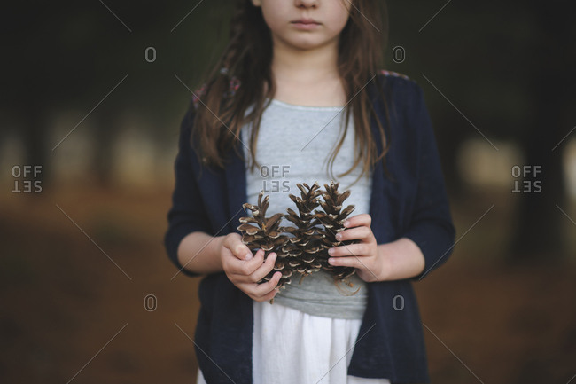 Midsection of girl holding pine cones