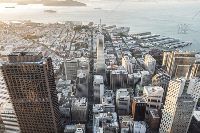 High angle view of Transamerica Pyramid in city