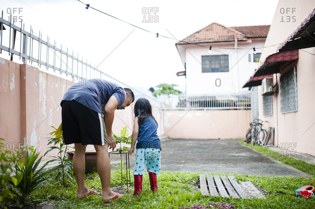 Father with daughter examining plants in backyard