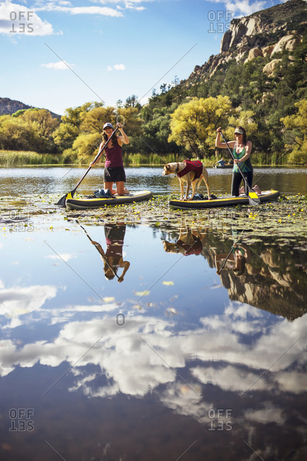 Happy friends with dog paddle boarding in lake by mountain
