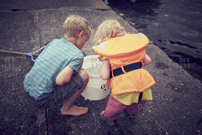 Children looking into bucket