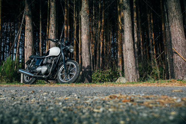 Cafe racer motorbike in a forest road