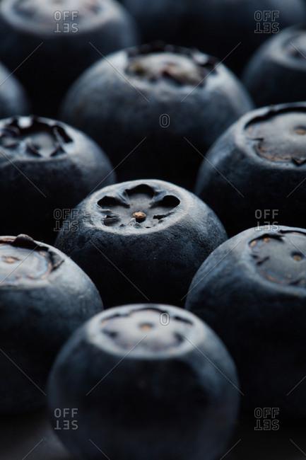 Macro shoot of a blueberries