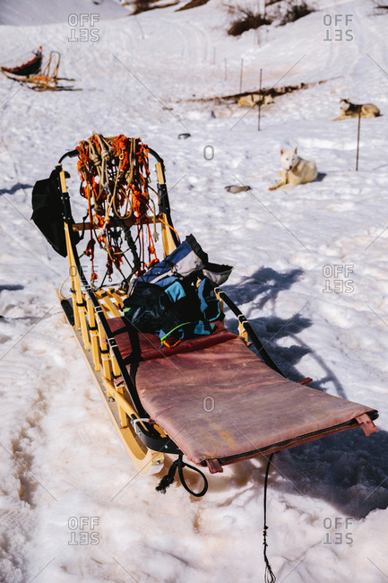 The empty sleds and the dogs resting nearby, vertical outdoors shot,