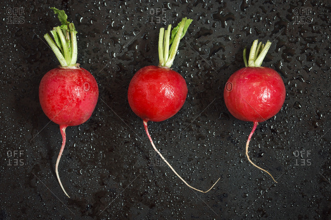 Wet raw vegetables, three red radish over black background