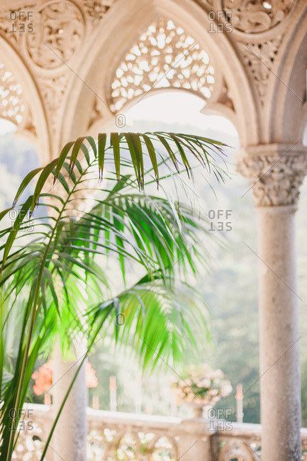 Palm plant on balcony at the Montserrat Palace in Sintra, Portugal