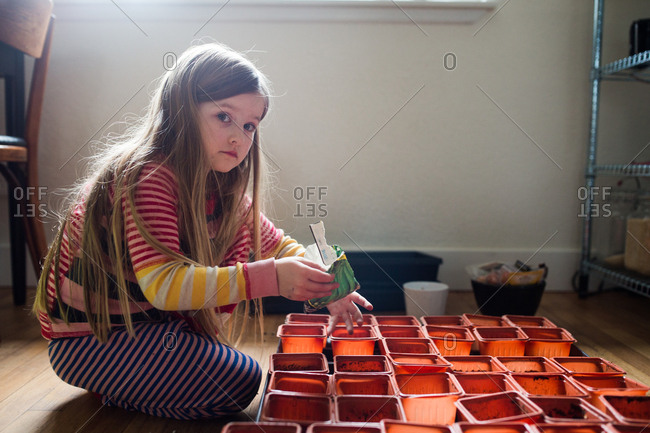 Little girl planting seeds in plastic containers indoors
