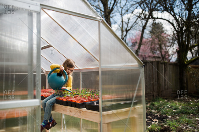 Young girl watering young plants in a greenhouse