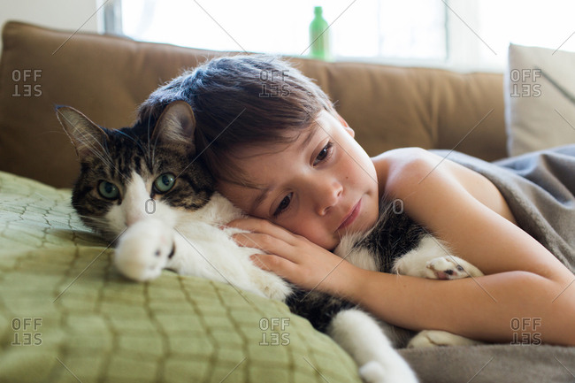 Little boy cuddling with a fluffy cat on a sofa