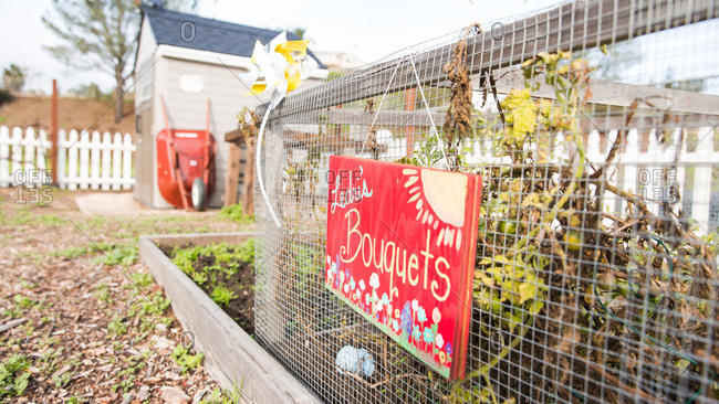 Del Obispo Elementary School in Dana Point, CA. - January 10, 2017: Outdoor garden in spring.